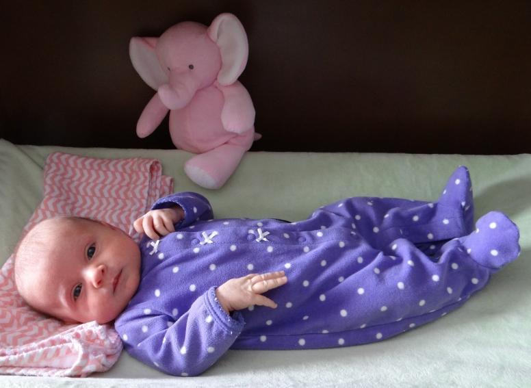 Pink Elephant likes my purple pajamas.