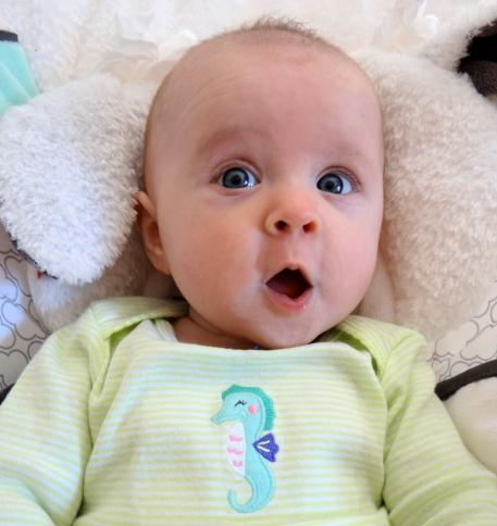 Shocked baby wearing seahorse shirt