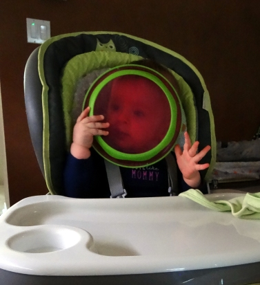 baby looking through a plate