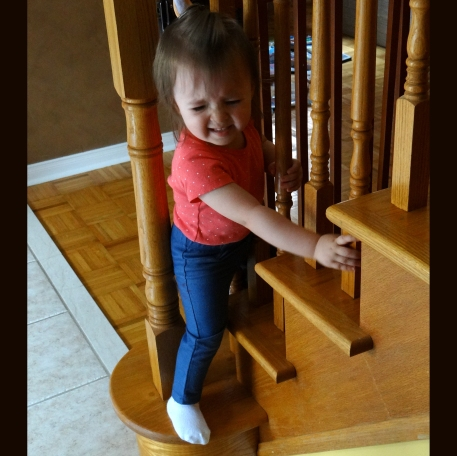 Peachy trying to outwit the toddler safety gate